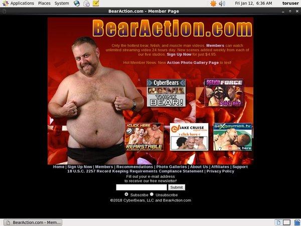 Bearaction.com Payment Methods